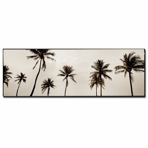Black & White Palms by Preston Framed Photographic Print on Wrapped Canvas by Trademark Fine Art