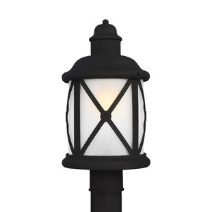 Deals Burwood 1-Light Lantern Head By Darby Home Co