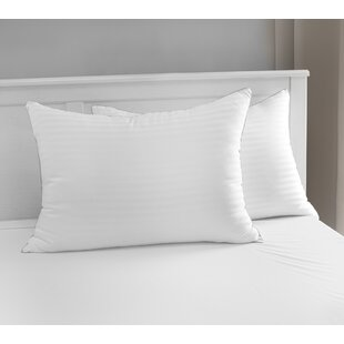 Luxury Memory Fiber Pillow with 500 Thread Count Tencel® Cover (Set of 2) By Restonic