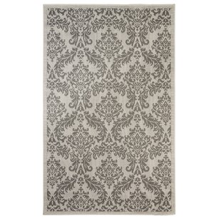 Sexton Light Gray/Anthracite Indoor/Outdoor Area Rug By Astoria Grand