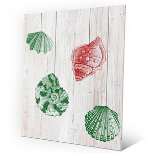'Christmas Shells - Green Side' Graphic Art on Plaque