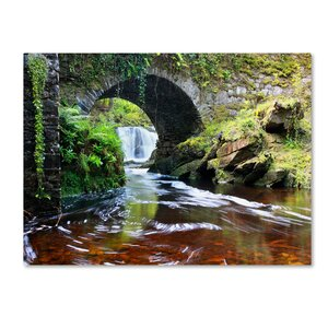 'Lush River' by Pierre Leclerc Framed Photographic Print on Wrapped Canvas by Trademark Fine Art
