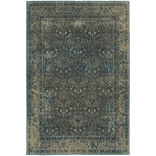 Best Pheonix Navy/Gray Area Rug By Ophelia & Co.