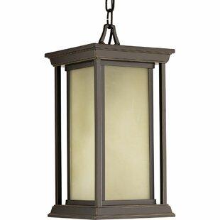 Compare prices Zahn 1-Light Outdoor Hanging Lantern By Brayden Studio