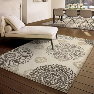 Cayden Ivory Area Rug by Andover Mills