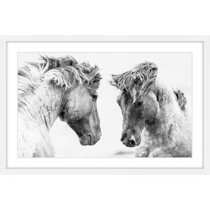 'Horse Pair' Framed Photographic Print on Paper by Marmont Hill