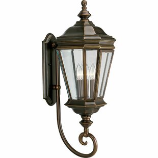 Shopping for Triplehorn 3-Light Brass Outdoor Sconce By Alcott Hill