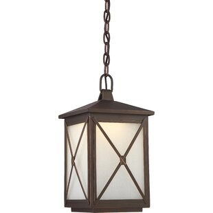 Sagebrush 1-Light LED Outdoor Hanging Lantern By Laurel Foundry Modern Farmhouse Outdoor Lighting