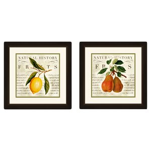 Natural History Fruits 2 Piece Framed Graphic Art Set by PTM Images