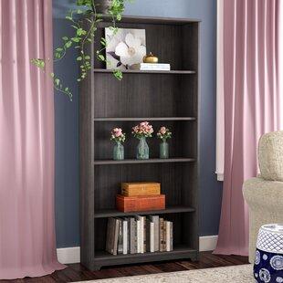 Hillsdale Standard Bookcase Red Barrel Studio Herry Up