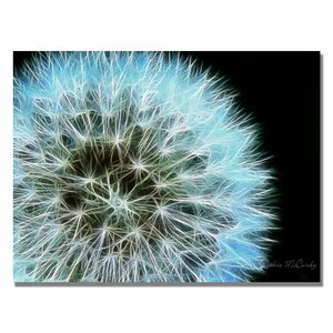 'Dandelion Seed Head Full' by Kathie McCurdy Framed Graphic Art on Wrapped Canvas by Trademark Fine Art