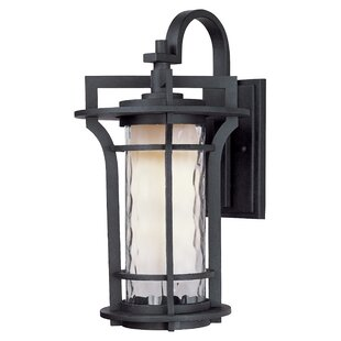 Best Review Espitia 1-Light Outdoor Wall Lantern By Millwood Pines