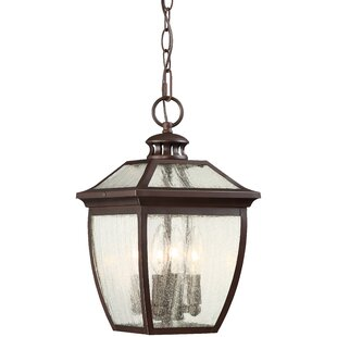 Auer 4-Light Outdoor Hanging Lantern By Darby Home Co Outdoor Lighting
