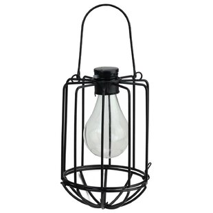 Buy clear Chessani Cylindrical Solar Powered 1-Light Outdoor LED Hanging Lantern By Williston Forge