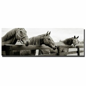 Briland Three by Preston Framed Photographic Print on Wrapped Canvas by Trademark Fine Art