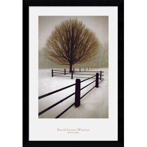'Solitude' by David Lorenz Winston Framed Photographic Print by Amanti Art