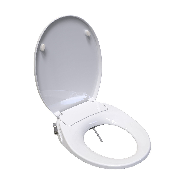 Saniwise Haun Toilet Round Bidet Seat Wayfair