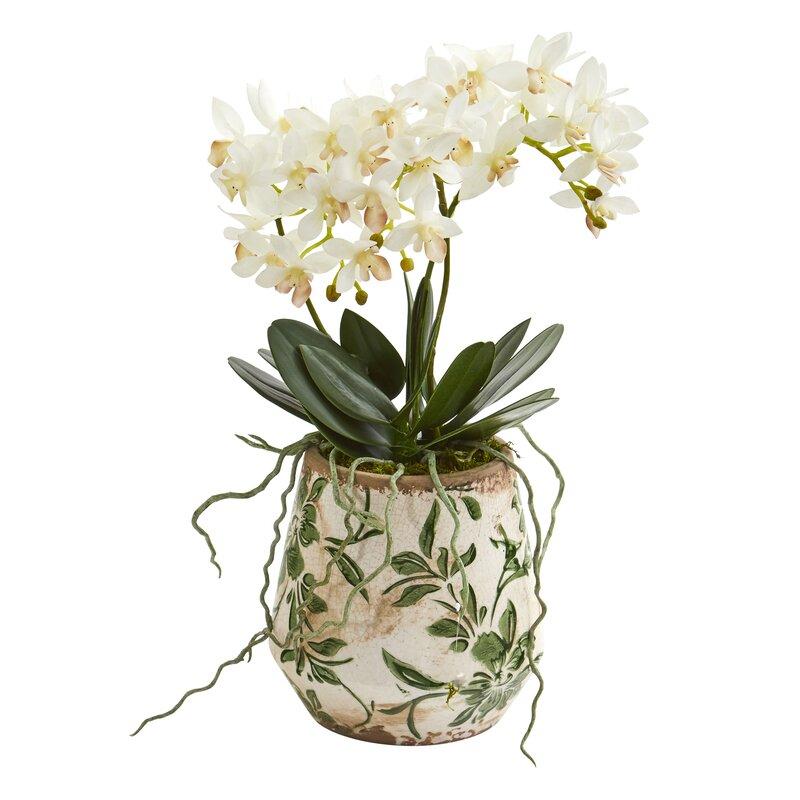 floral home decor orchid floral design wayfair.htm bloomsbury market artificial orchids floral arrangement in vase  artificial orchids floral arrangement