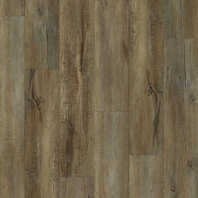 Sample Norwich Oak Luxury Vinyl Plank In Venice By Shaw Floors