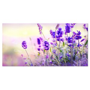'Purple Lavender Field' Graphic Art on Wrapped Canvas by Design Art