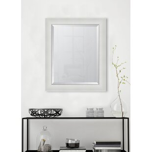High Gloss Resin Frame Wall Mirror by Melissa Van Hise