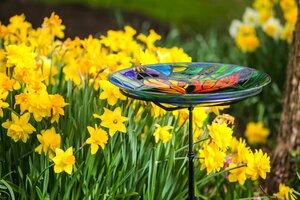 The 8 Best Birdbaths for Your Garden