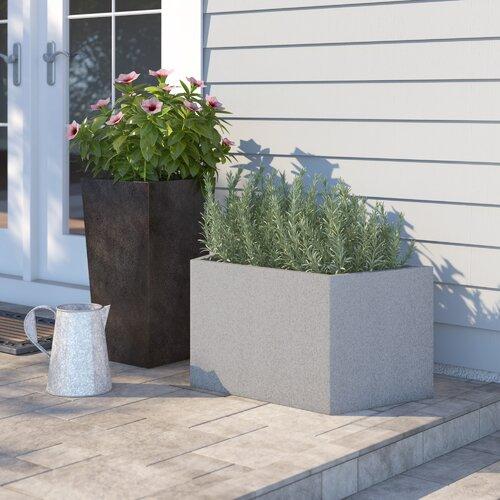 Alta Plastic Planter Box Freeport Park Colour: Grey