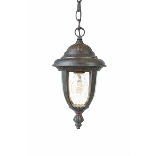 Price Check Prestwood 1-Light Outdoor Hanging Lantern By Charlton Home