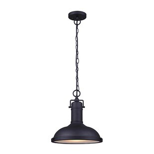 Price Check Barnfield 1-Light Outdoor Pendant By Gracie Oaks