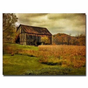 Old Barn on Rainy Day by Lois Bryan Photographic Print on Canvas by Trademark Fine Art