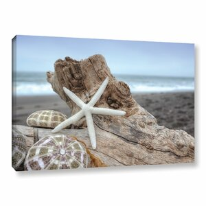 'Crescent Beach Shells 6' Photographic Print on Wrapped Canvas by Highland Dunes
