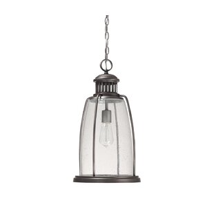Shop For Harbour 1-Light Outdoor Pendant By Capital Lighting
