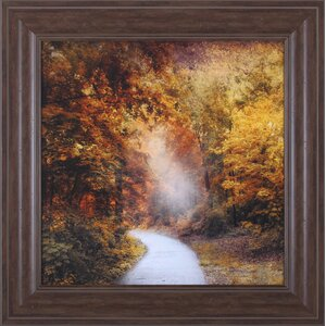 October Trail by Jessica Jenney Framed Photographic Print by Art Effects