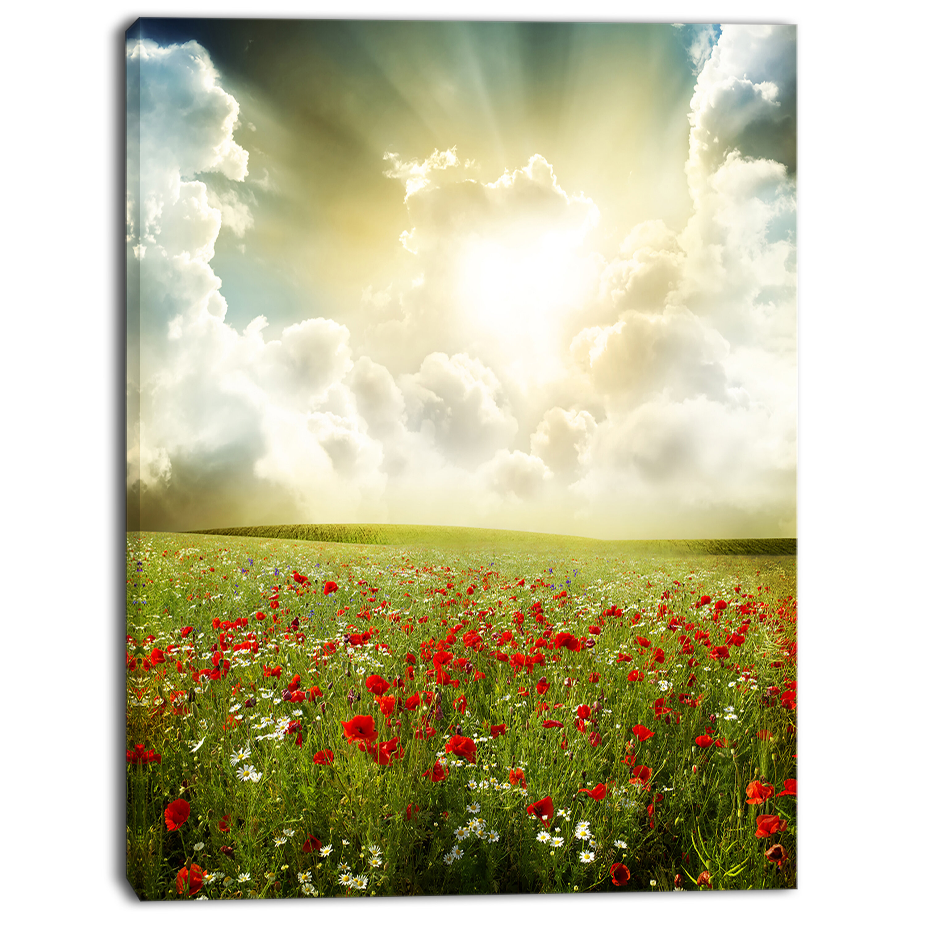 DesignArt \'Dramatic Sky Over Poppy Field\' Photographic Print on ...