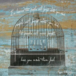 'Maya Angelou Quote with Bird Cage' by Graffitee Studios Graphic Art on Wrapped Canvas by Red Barrel Studio