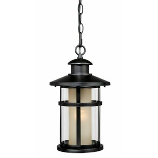 Affordable Enger 1-Light Outdoor Hanging Lantern By Breakwater Bay