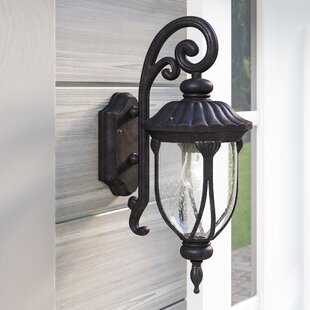 Inexpensive Angie 1-Light Outdoor Wall Lantern By Fleur De Lis Living