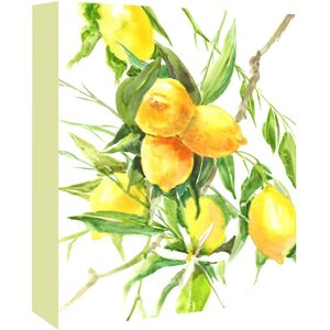 'Lemon Tree' Painting Print on Wrapped Canvas by Ophelia & Co.