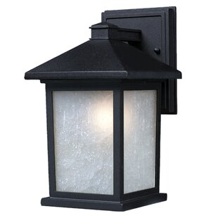 Best Choices Bridgeforth 1-Light Outdoor Wall Lantern By Andover Mills