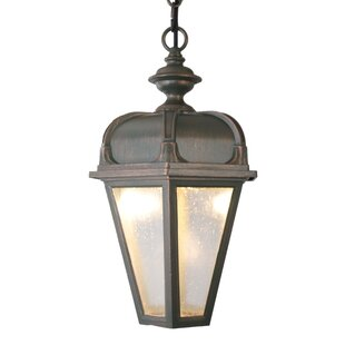 Flannigan 1-Light Outdoor Hanging Lantern By Charlton Home Outdoor Lighting