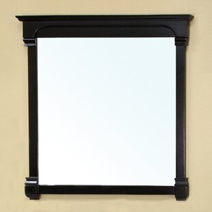 Shopping for Crestwood Mirror By Bellaterra Home