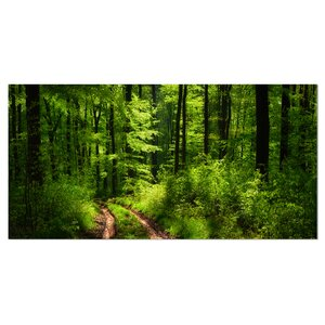 Fascinating Greenery in Wild Forest Photographic Print on Wrapped Canvas by Design Art