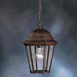 Connan 1-Light Outdoor Hanging Lantern By Astoria Grand Ceiling Lights