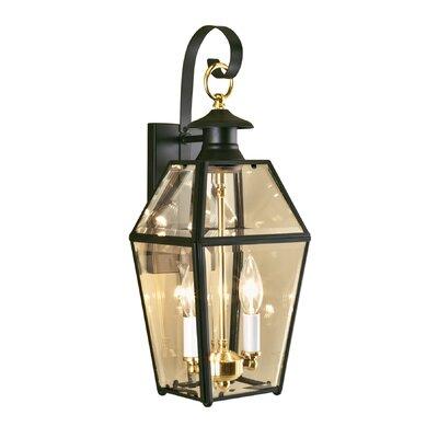 Estevan 2-Light Outdoor Wall Lantern Finish: Black