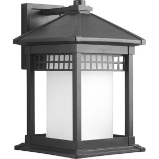 Triplehorn 1-Light Outdoor Wall Lantern by Alcott Hill