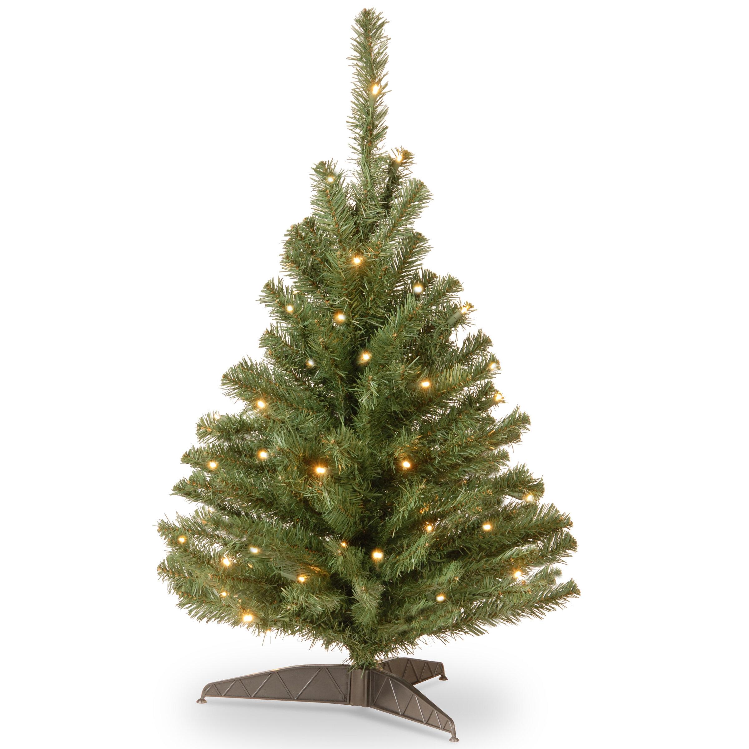 Ebern Designs Kincaid 3\' Green Spruce Trees Artificial Christmas ...