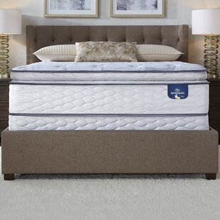 Sertapedic 12 5 Plush Pillow Top Mattress