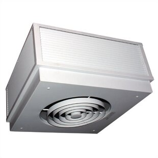 Commercial 6,826 BTU Ceiling Mounted Electric Fan Wall Insert Heater by TPI