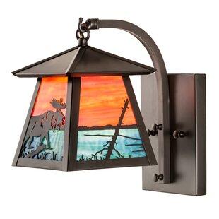 Best Reviews 1-Light Outdoor Wall Lantern By Meyda Tiffany