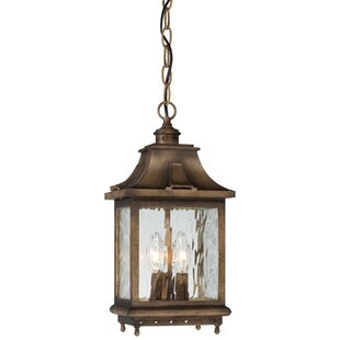 Danville 3-Light Outdoor Hanging Lantern By Darby Home Co Outdoor Lighting